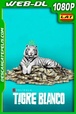 Tigre blanco (2021) 1080p WEB-DL Latino