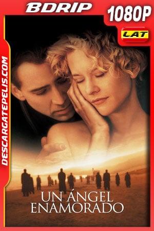 Un ángel enamorado (1998) 1080p BDrip Latino – Ingles