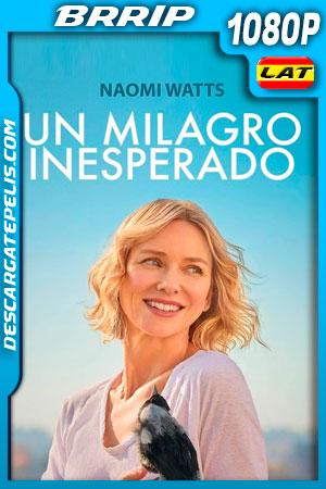 Un milagro inesperado (2020) 1080p BRRip Latino