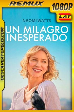 Un milagro inesperado (2020) 1080p Remux Latino