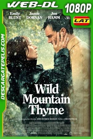 Wild Mountain Thyme (2020) 1080p AMZN WEB-DL Latino